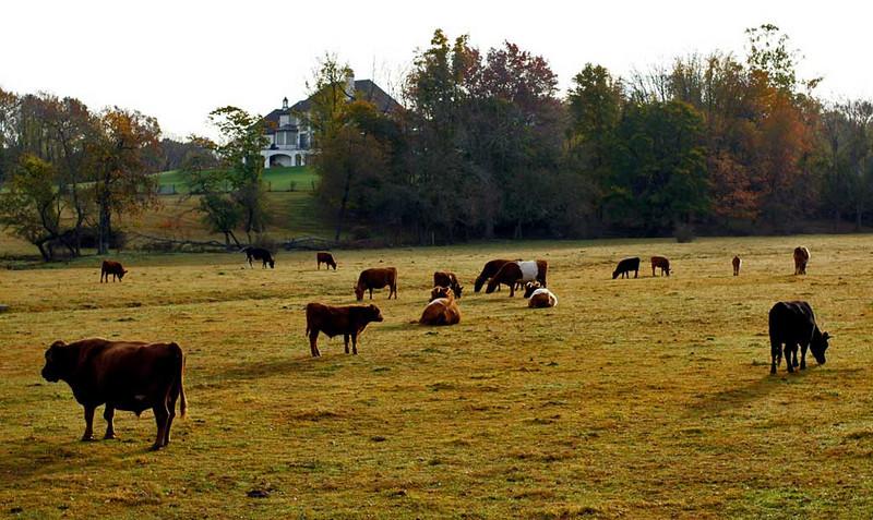 Pastorale, Chester Springs, Pennsylvania